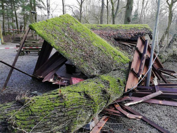 Baum zerstört Grillplatz im Wald