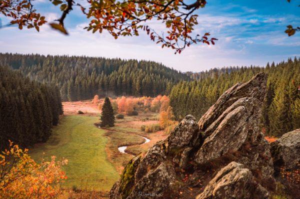 Idylisches Landschaftspanorama: Wald und wiese mit Fluss in Herbstfarben