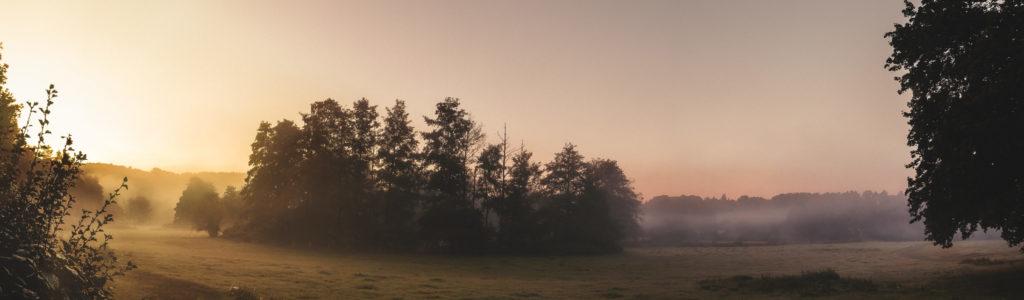 Herbstmorgen im Wurmtal; leichter Nebel zieht in der aufgehenden Sonne über Wiesen und Bäume
