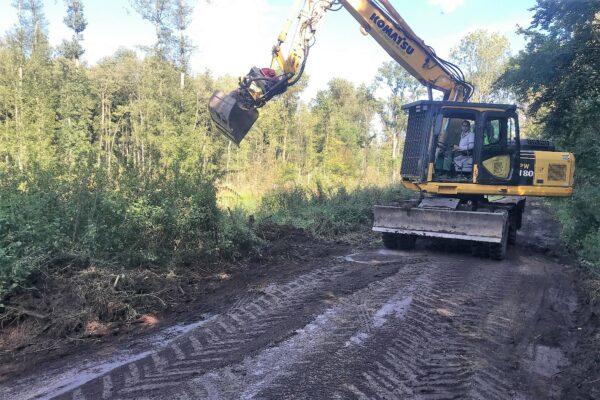 Ein Bagger arbeitet auf einem Waldweg